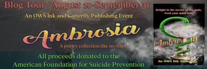 Ambrosia long tour banner